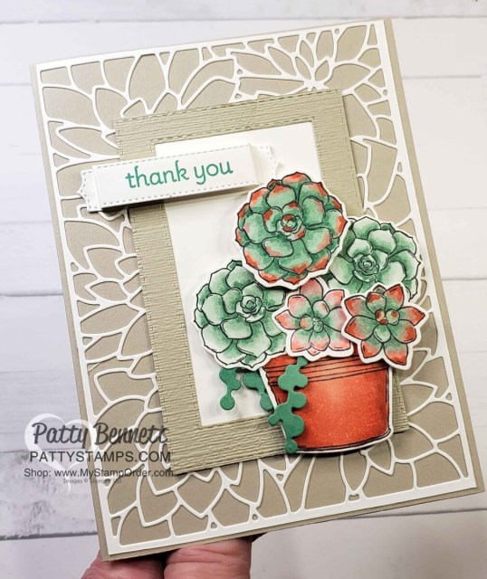 Simply Succulents stamp set image colored with Stampin' Blends markers. by Patty Bennett www.PattyStamps.com