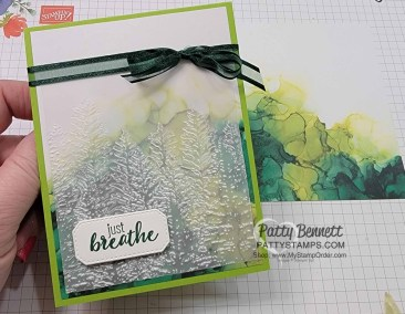 Quick and Easy Vellum cards with Expressions in Ink
