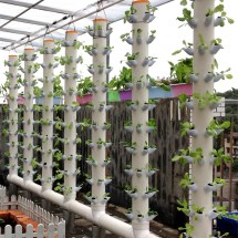 Dwc Hydroponics Vertical Tower Gardern Growing System