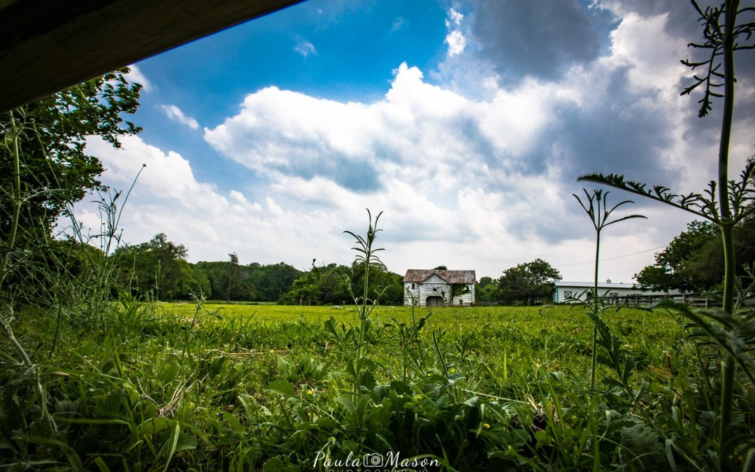 Using a Wide Angle Lens