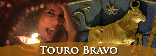 Touro Louco