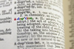 Adoption in the Dictionary