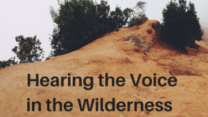Hearing the Voice in the Wilderness
