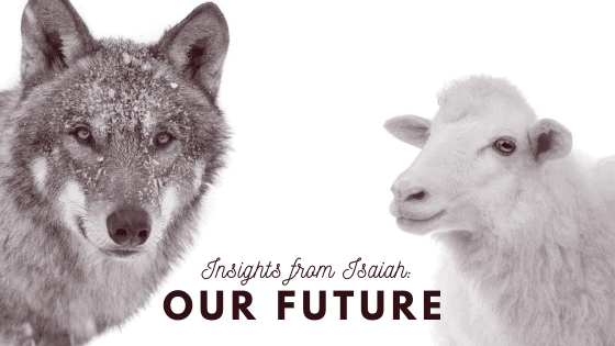 Wolf and lamb Our Future Title graphic