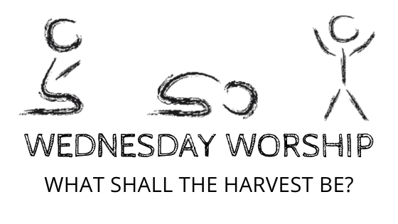 What Shall the Harvest Be title graphic