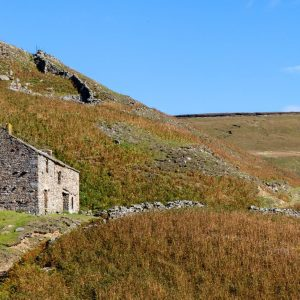 Barn above Crackpot Hall, Swaledale