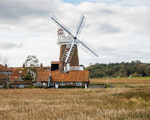 Reed and the mill