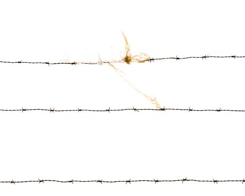 Barned Wire
