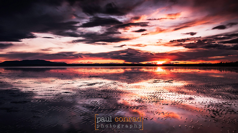 The setting Sun is reflected off the mudflats of Bellingham Bay during low at Locust Beach in Bellingham, Wash. © Paul Conrad/Paul Conrad Photography - Rights limited to laptop/desktop computer usage only. No printing allowed.