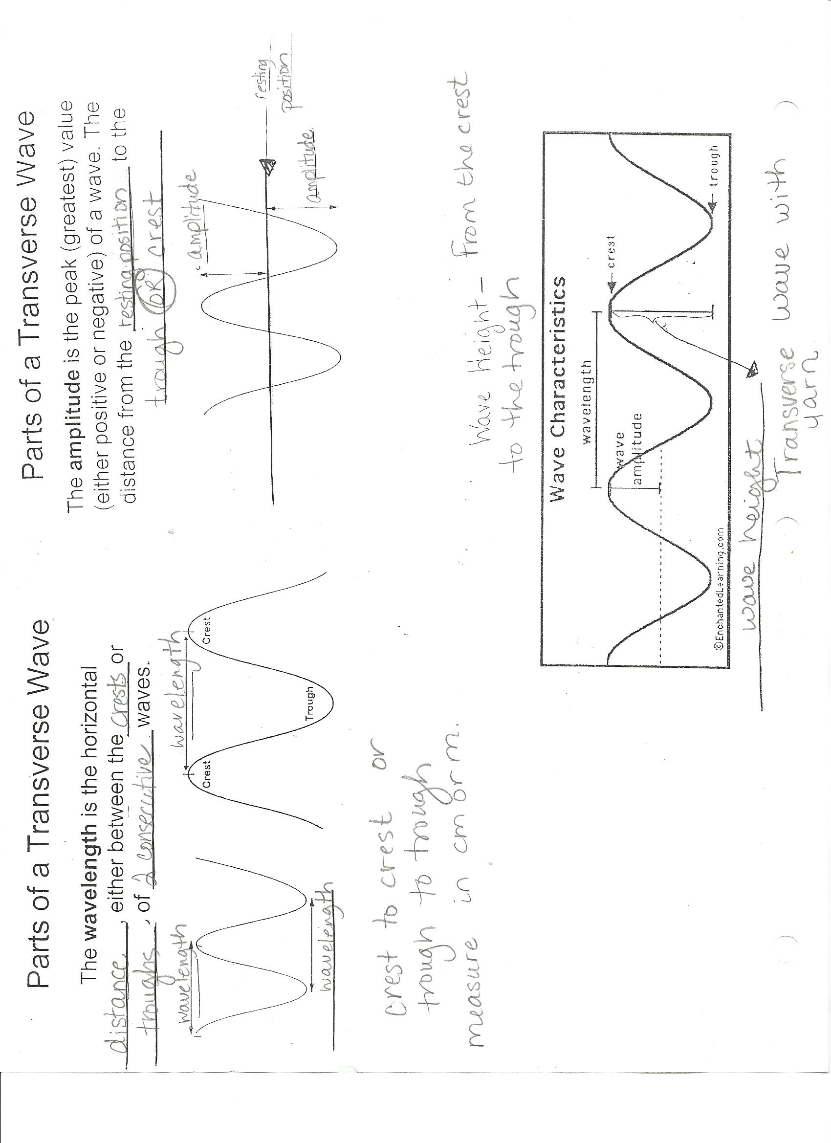 worksheet. Wave Characteristics Worksheet. Worksheet Fun