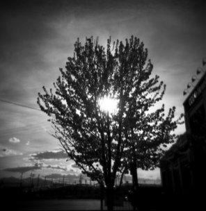 holga black and white film street photography