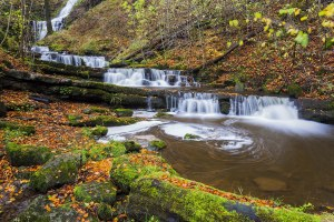 Autumn at Scalebar Force Waterfall, a Yorkshire Landscape Print Yorkshire Landscapes Autumn