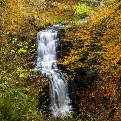 Scalebar Force Waterfall, a Yorkshire a fine art landscape Yorkshire Landscapes Autumn