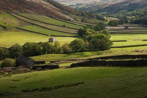 Sweeping Countryside in Swaledale, Yorkshire Yorkshire Landscapes Autumn