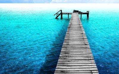 I wish I was here…