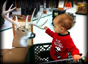Daniel thinks the deer is a dog. And he like to kiss our dogs!