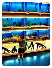 Big day at the zoo ( PetsMart)