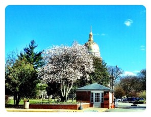 WV's Capitol was beautiful today!