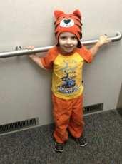 Daniel the Tiger