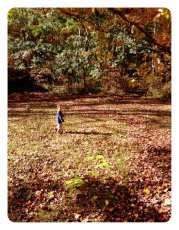 Little boy. Big yard.