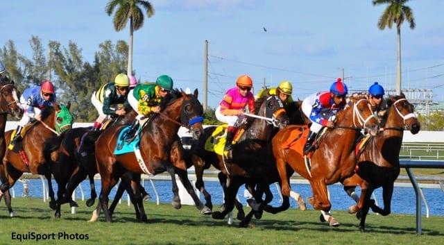 Florida Racing Dates: Is It Really About Live Racing ...