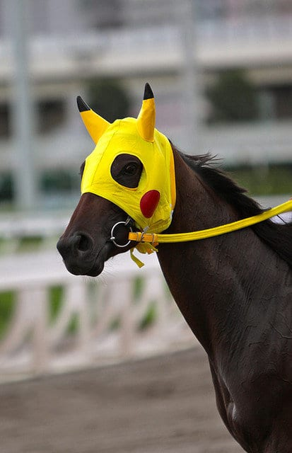 Racehorse Named for Cartoon Captures Imaginations in Hong