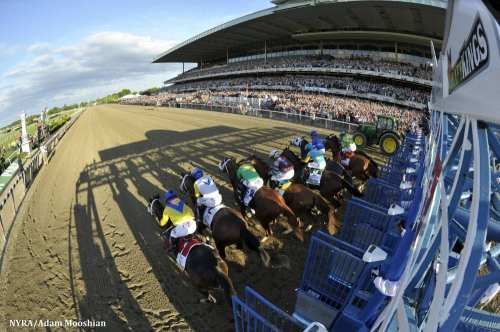 small resolution of nbc sports belmont park live telecasts airing stars stripes racing festival