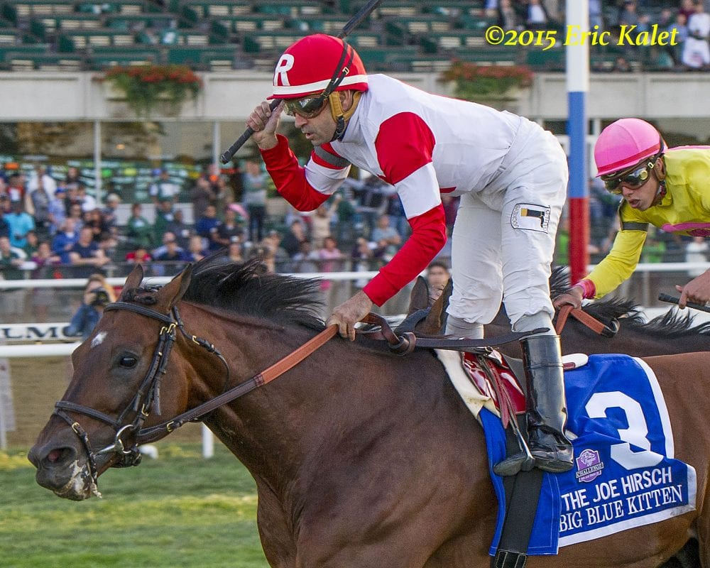 Champion Big Blue Kitten Retired From Racing Horse