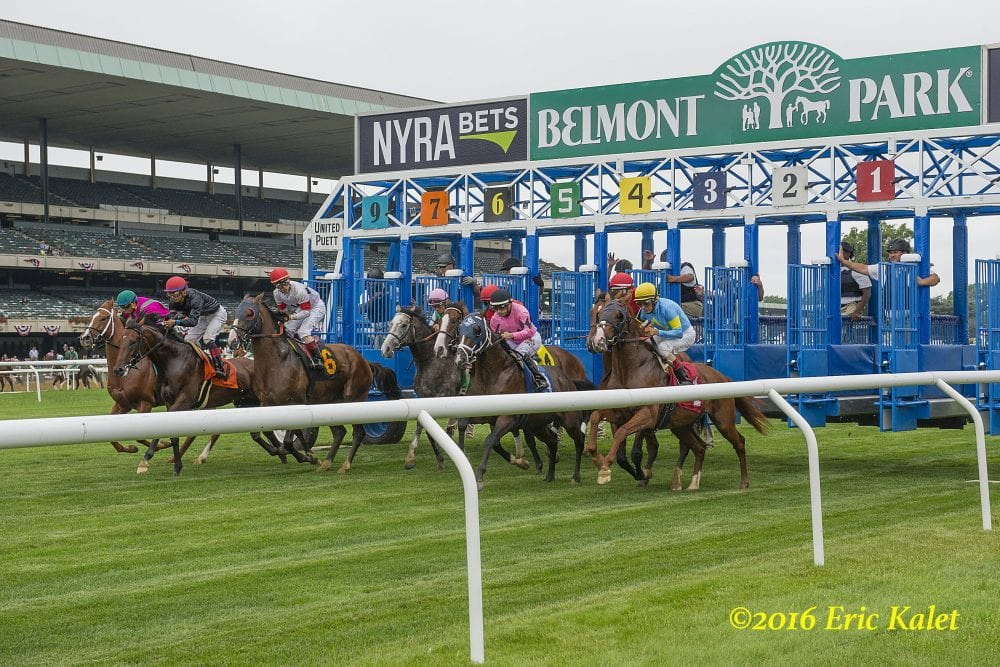 hight resolution of the precautionary quarantine of barn 44 at belmont park for equine herpesvirus 1 remains in place after a follow up test has come back positive on one horse