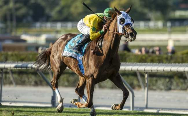 Bloodlines Presented By Curlin To Mischief A Climax
