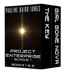 Project Enterprise Bundle
