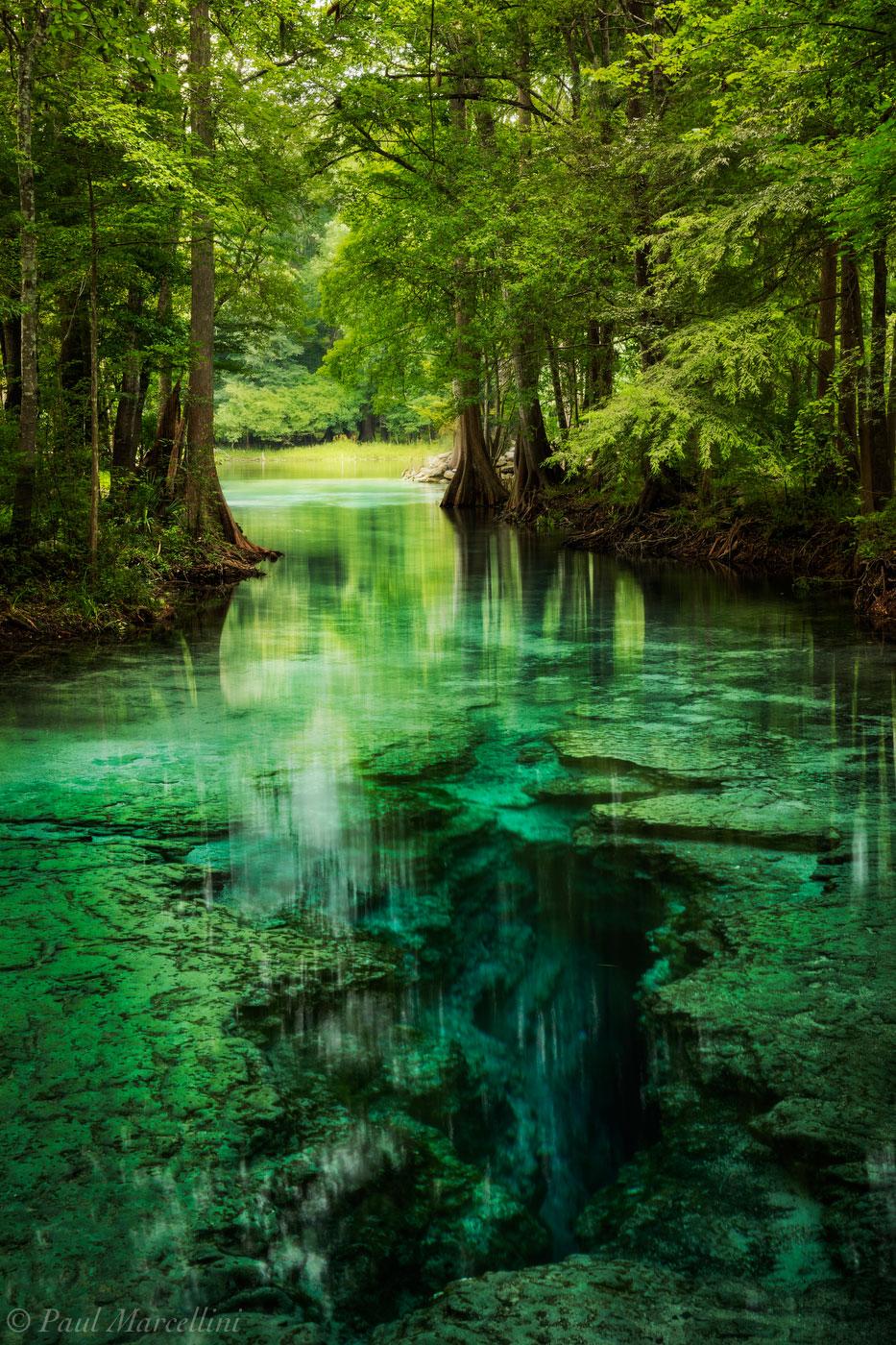 Little Devil Spring  Santa Fe River Florida  Florida