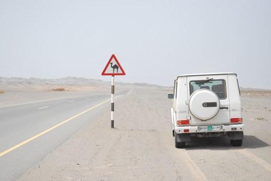 Beware: Camels!