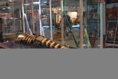 Stripy bee gun