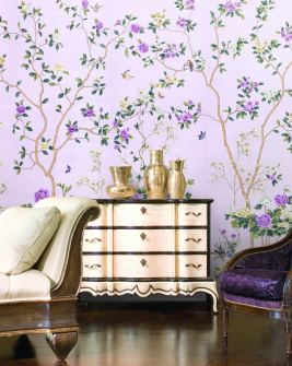 Carolina in striking purple tones
