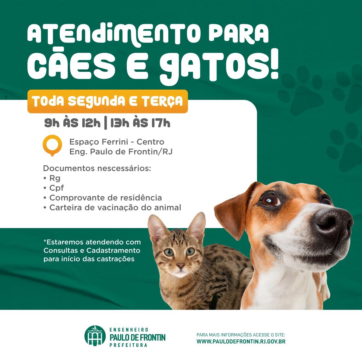 You are currently viewing Atendimento veterinário gratuito para cães e gatos