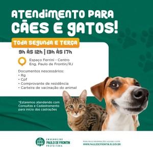 Read more about the article Atendimento veterinário gratuito para cães e gatos