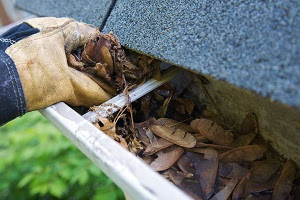Why Is Cleaning Your Gutter Important?