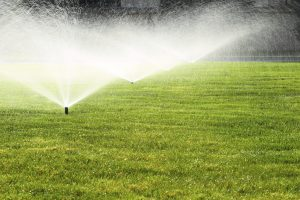 Benefits Of An In-ground Irrigation System