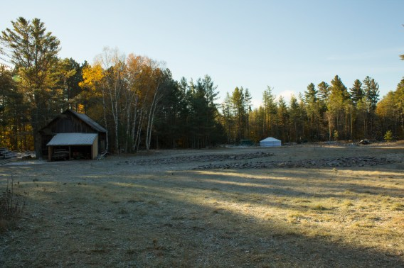 Hyla's photo of an early autumn frost.