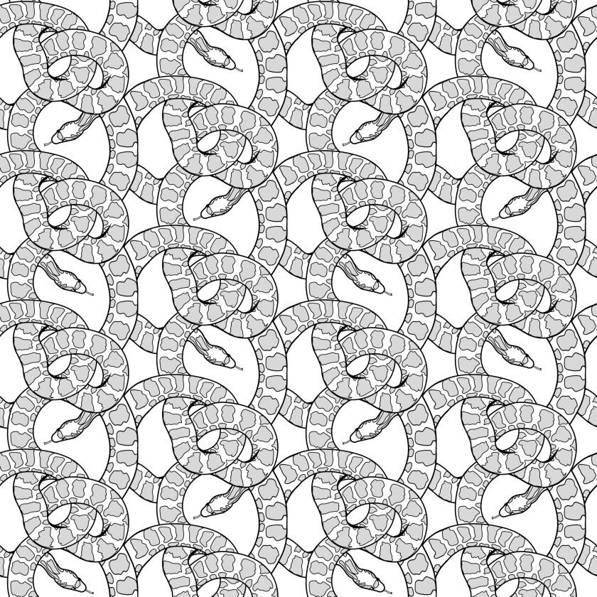 paom snake grey