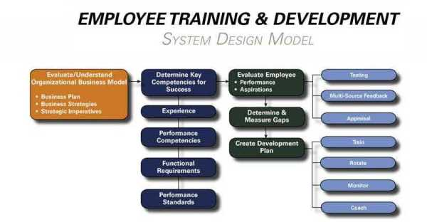 The Beauty of an Employee Training System Paulson