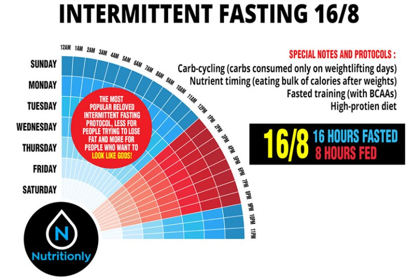 Intermittent fasting made easy: What to know about the 16:8 diet