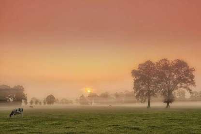 twente-landschap