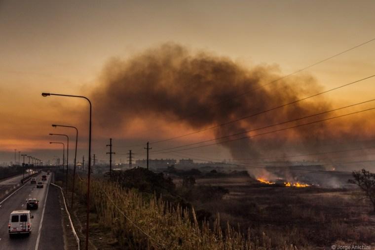 Investigadores y científicos manifestaron su preocupación por la quema de humedales | Pausa