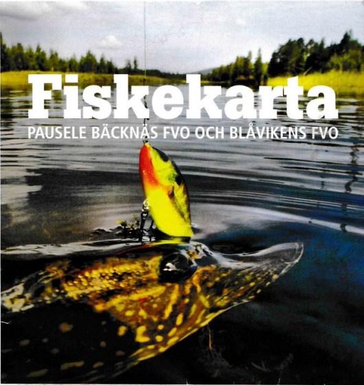 fiske3