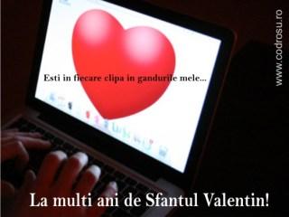 felicitari de sf valentin_poze_10