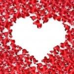 petale de flori si inima