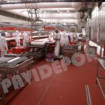 pavimento industria alimentaria