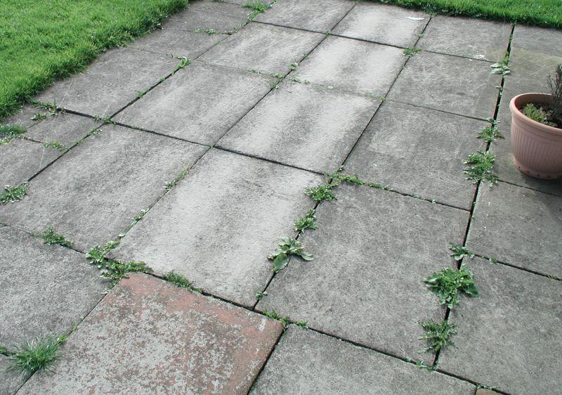Come posare un pavimento in cemento La scelta delle tipologie le tecniche di posa e le finiture